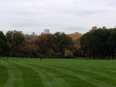 Sheep Meadow looking very fine this Fall day!