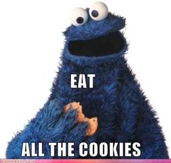I'm Cookie Monster. He's somewhere in the middle-to-mostly-sunny side of life, isn't he? Plus, I like cookies.