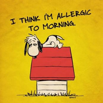 This is how I feel when Monday rolls around. Not because I really hate mornings but am not a fan of Mondays at school.
