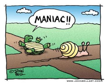 Whatever is slower than a snail, that's what this year has been like.